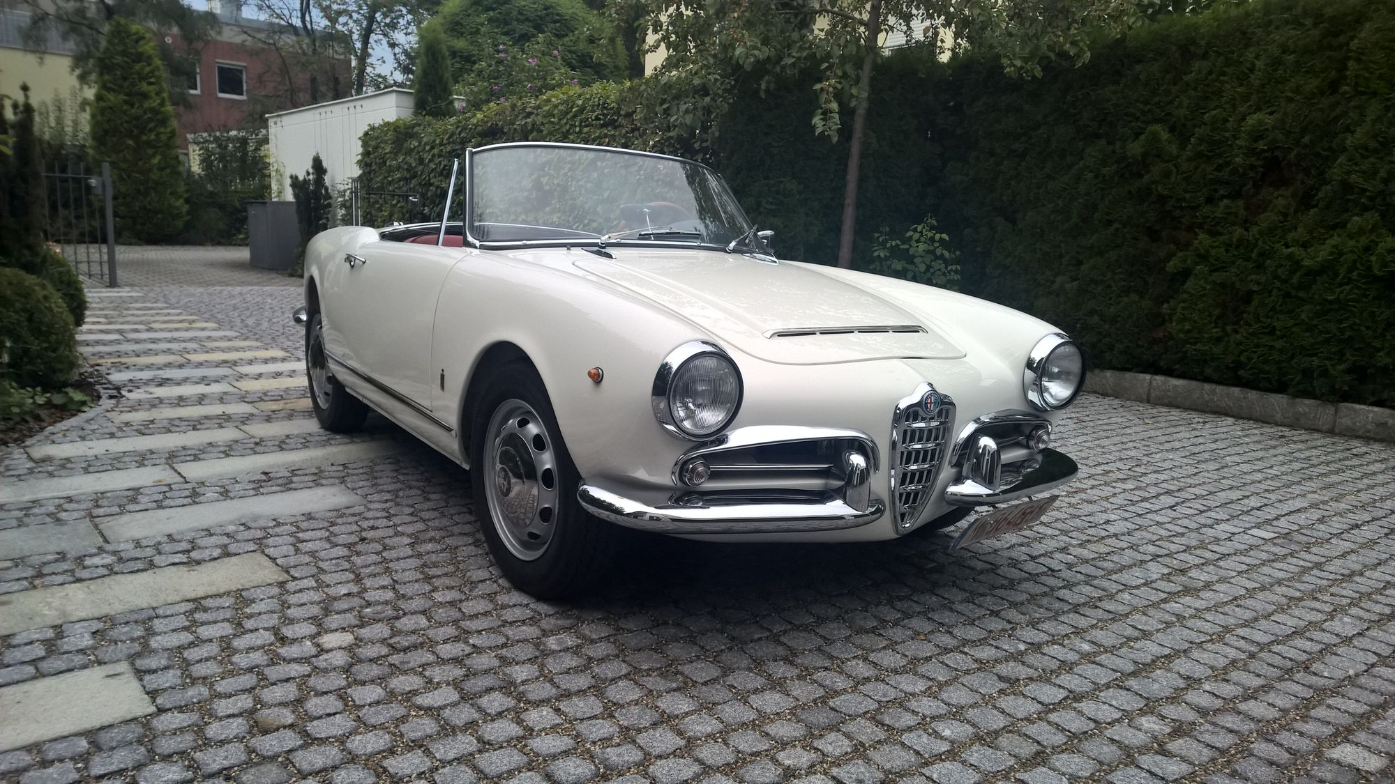 alfa romeo giulia spider veloce oldtimer ig kirchheim. Black Bedroom Furniture Sets. Home Design Ideas